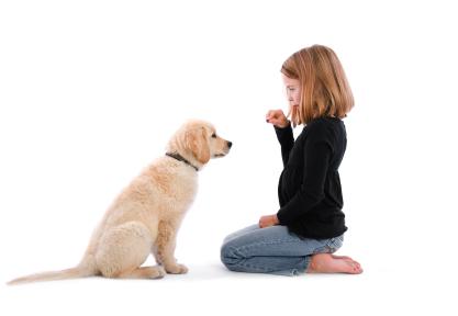 Sfaturi pentru comenzi pe înţelesul câinelui tău
